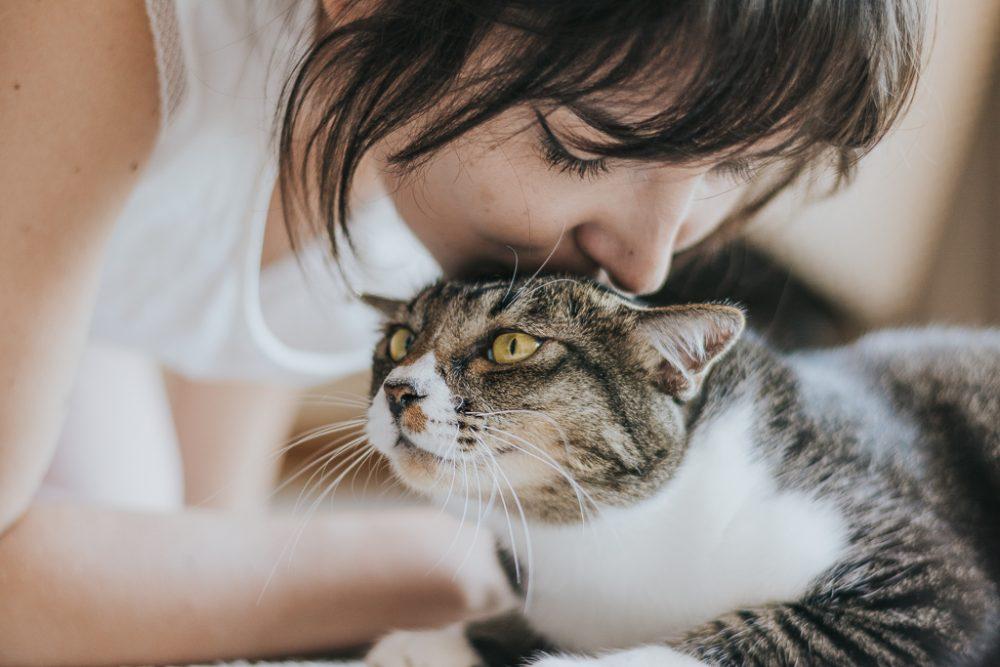 dona beija o gato por basti fotografia de animais pet photography