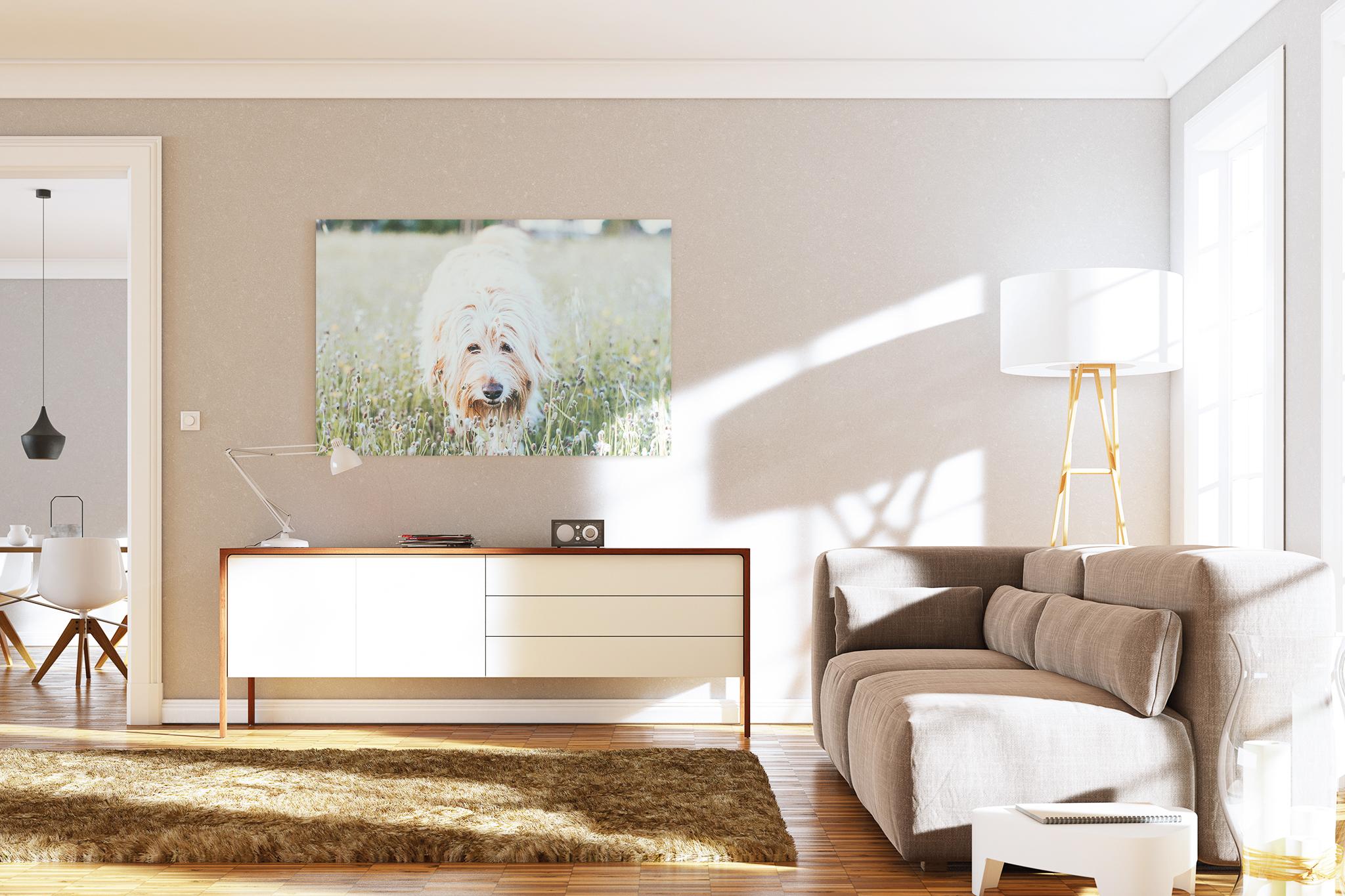 quadro pendurado na parede de uma sala